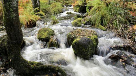 La Ruta dos Muiños sigue el cauce del río Mera