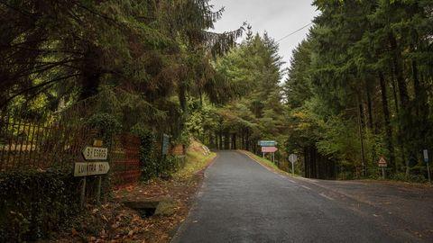 Se pretenden hacer mejoras viales en el entorno del monasterio, talando más de un centenar de árboles