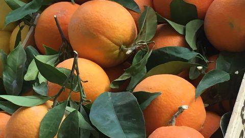Las naranjas de mesa están al punto