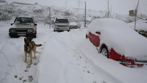 Esta ha sido la primera nevada importante del otoño del 2020