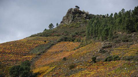 En lo alto de esa roca sobre las viñas de Doade está el mirador de Pena do Castelo