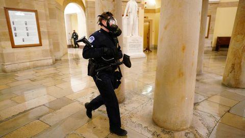 Fuerzas de seguridad en el Congreso de los Estados Unidos