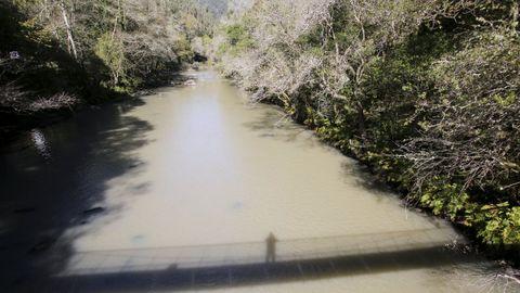 Aspecto del agua del río Eume, por debajo del embalse, a mediados del mes de octubre