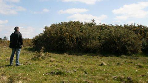 En la zona de Monte do Gato hay numerosas necrópolis, como la de Rodeiro, en Oza-Cesuras. Imagen de archivo