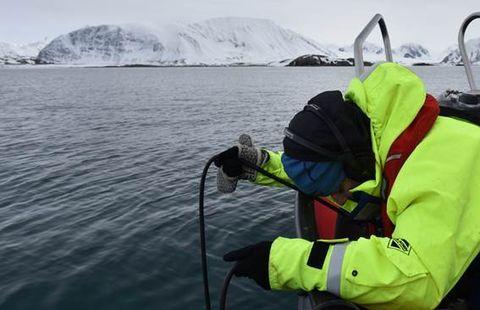 Trabajo de campo con un hidrófono en las aguas del Mar de Barents