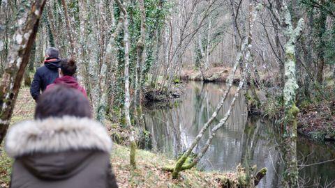 El entorno, con el río al lado de la finca, es privilegiado
