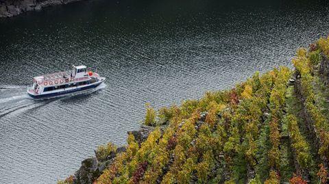 Uno de los barcos de la Diputación, este otoño en el cañón del Sil