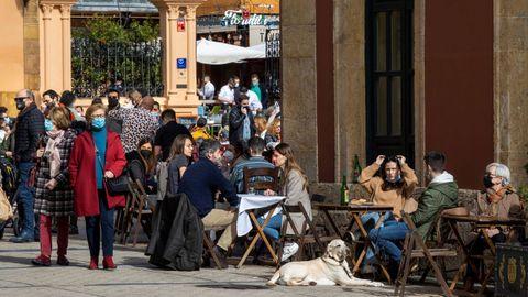 Paseantes en Oviedo. Varias personas disfrutan en la terraza de un bar de la ciudad