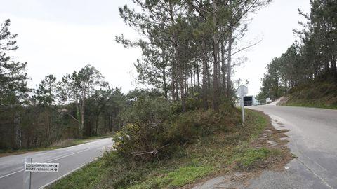 Las siete parcelas forestales del Concello están en diferentes parroquias
