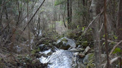 Monte Xiabre, entre Vilagarcía, Catoira y Caldas