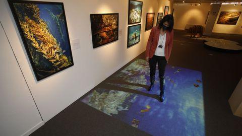 A exposición estará en Lugo ata xuño