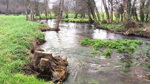 Vista del río Miño a su paso por el término municipal de A Pastoriza