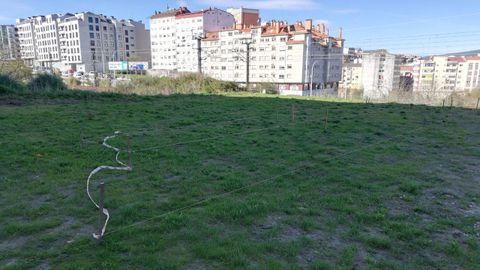 Terrenos donde se ubicará la nueva huerta urbana, en el entorno de la calle Ernesto Caballero