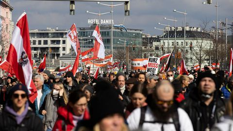 Protestas en Viena