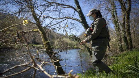 Una pescadora, en Chaián, en el río Tambre