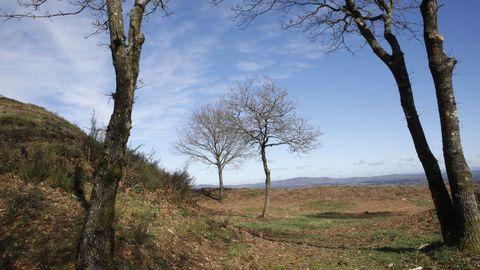 El castro de Castromaior destaca por su buena conservación y las vistas del centro de la provincia de Lugo