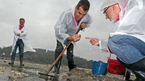 Toni Cantó en el 2012 mariscando con las mariscadoras de Campelo en Poio en la época en que era diputado de UPyD, acompañado del candidato a la presidencia de la Xunta, José Canedo.