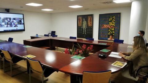 La alcaldesa de Narón, en la reunión telemática con el vicepresidente de la Xunta y otros regidores