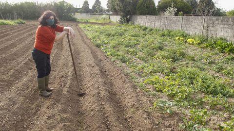 Margarita Sánchez, vecina de Ares de 71 años, en su plantación de patatas en la zona de Estacas
