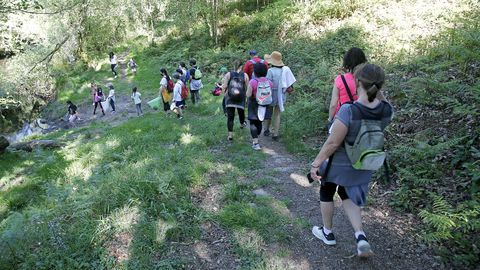 Proyecto Voz Natura del CEIP Marcón en O Salgueiral, Bora