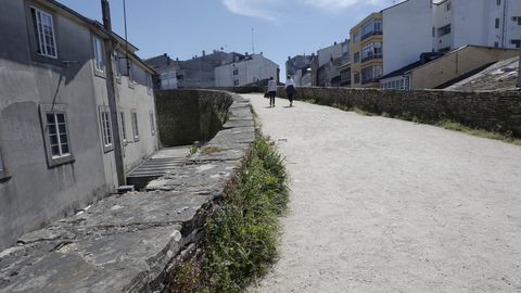La hierba desluce la Muralla, que pierde así parte de su buena imagen
