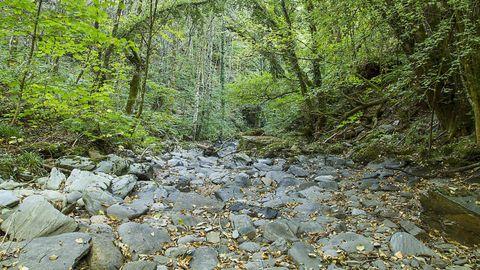 Una parte del tramo del río Antigua que se seca por completo durante el verano