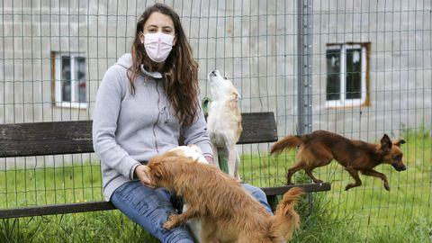 Yadira Tenreiro, en una imagen tomada en Castro, rodeada de cuatro de sus seis «perrhijos»