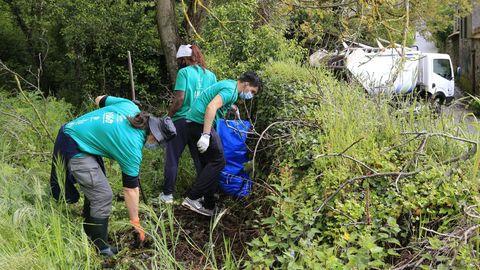 Voluntarios limpiando basura en Lugo