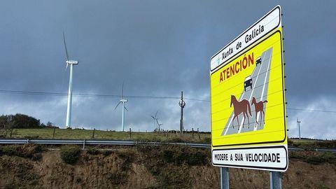 Imagen de la carretera a su paso por el alto de A Gañidoira, en el municipio de Muras