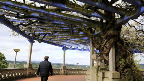A pérgola foi deseñada polo arquitecto racionalista Eloy Maquieira