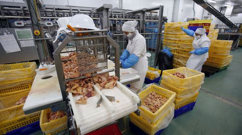 Una perspectiva distinta de Lago Aves, una empresa puntera del sector alimenticio pontevedrés
