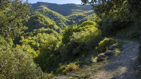 Ruta de la Devesa da Rogueira, donde tuvo que se auxiliada la excursionista