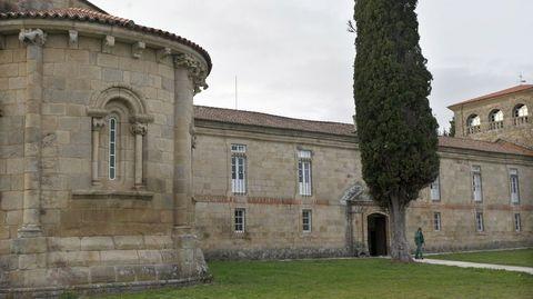 Ciprés á entrada do mosteiro das Bernardas, en Ferreira