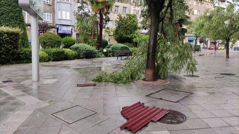Árboles rotos y tejados caídos en la ciudad