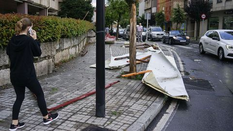 El viento arrancó árboles en casi todas las calles