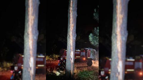 El rayo alcanzó a un árbol en el monte de San Alberto