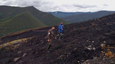 Técnicos de Medio Rural revisan el terreno quemado por el incendio del fin de semana pasado en O Courel
