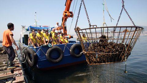 Un grupo de turistas a bordo de un barco mejillonero en la ría de Vigo.
