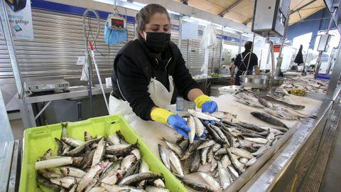 En la imagen, una placera del Mercado da Magdalena con sardinas