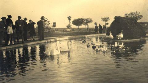 El estanque con los patos en el Parque Rosalía