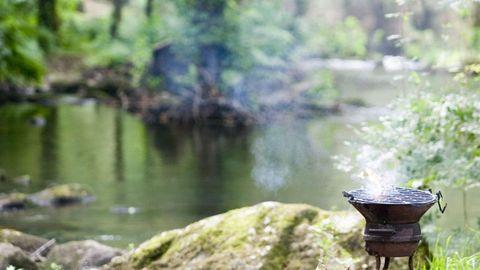 Imagen de archivo de una parrilla en un entorno de frondosas