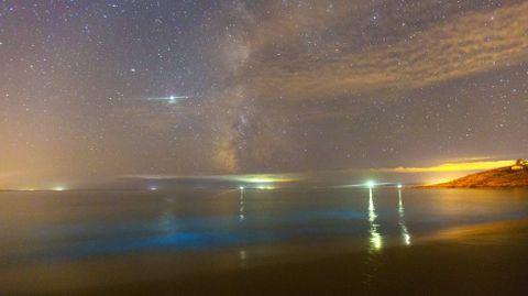 Agosto del 2020. Mar de ardora en la playa de Gures (Cee)