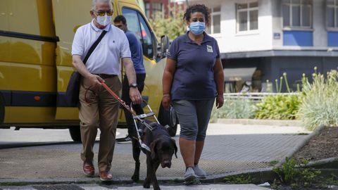 Explorando el barrio: Thabet se desplazó hasta A Coruña con una delegación de la escuela de perros guía de la ONCE. Junto a su monitoria, Nuria, estuvo conociendo las calles con José Manuel