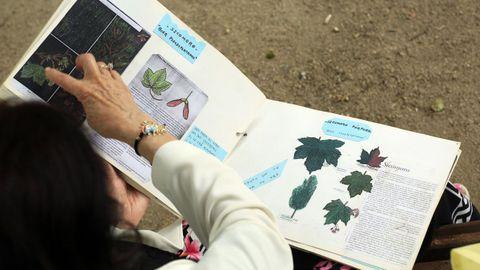 Tere conserva o libro co que ensinou aos seus alumnos a distinguir moitas das especies do parque