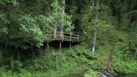 Algunos de los puentes y miradores de madera que cruzan el río se presentan inestables, además de 'invadidos' por la vegetación descontrolada.