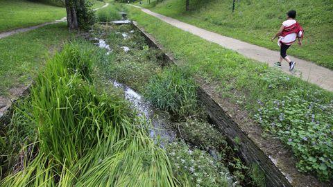 La mayor parte del transcurso del río discurre entre una cantidad excesiva de maleza, de forma que contemplar el agua se convierte en una tarea casi imposible.
