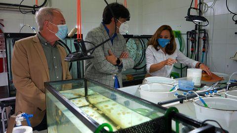 El concejal de Medio Ambiente y Movilidad del Ayuntamiento de Gijón, Aurelio Martín; Borja Sánchez, consejero de Ciencia; y Susana Acle, responsable de investigación del Acuario