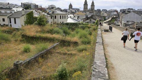 Bajo la maleza y la hierba está el yacimiento excavado en el 2008