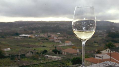 Copa de vino Albariño.