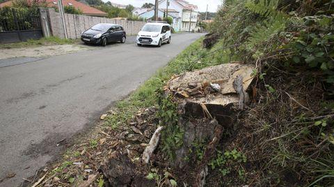 Imagen de archivo de la carretera hacia el Castillo de la Palma